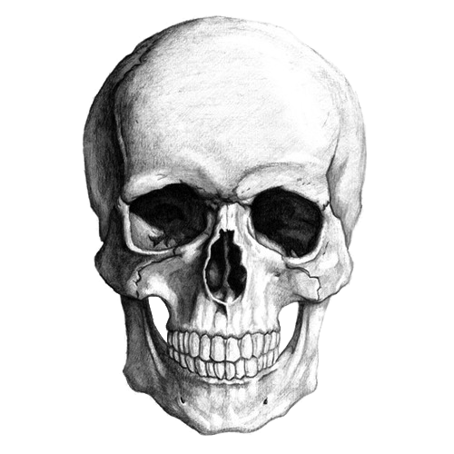 skull png images the symbol death png only #13741