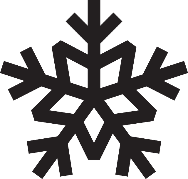 snowflake crystal snow vector graphic pixabay #10516