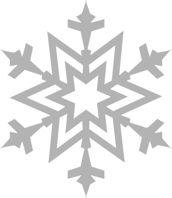 snowflake frost ice vector graphic pixabay #10537