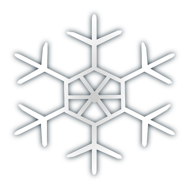 vector graphic snowflake snow ice frost cold #10526