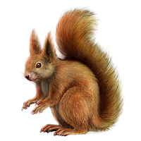 image huge item red squirrel mafiawarswiki #37007