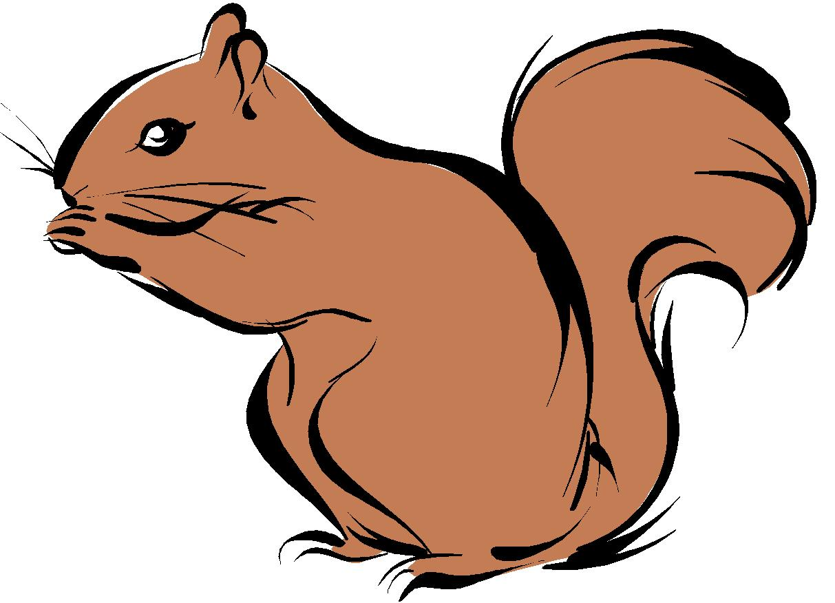 squirrel cartoon images clipart library #37265
