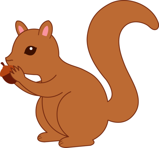 squirrel clipart #37277