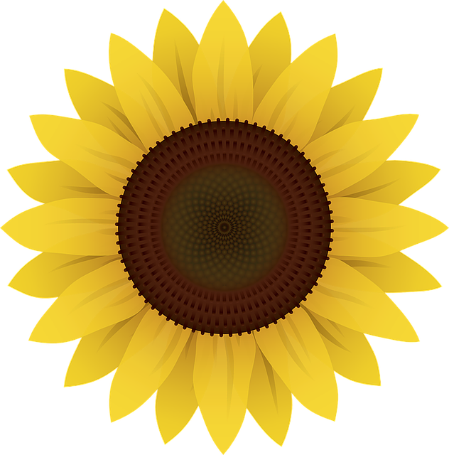 flowers sunflower plants vector graphic pixabay #17249