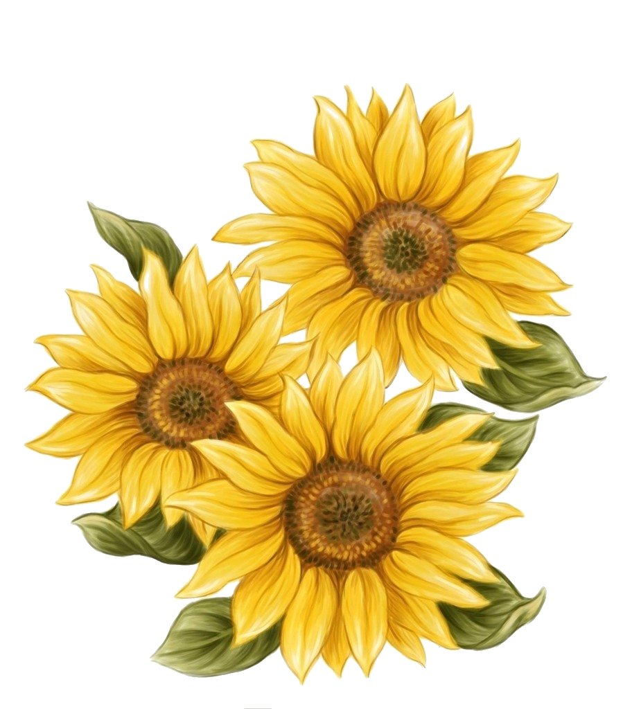 sunflower, orig coloring pages #17213