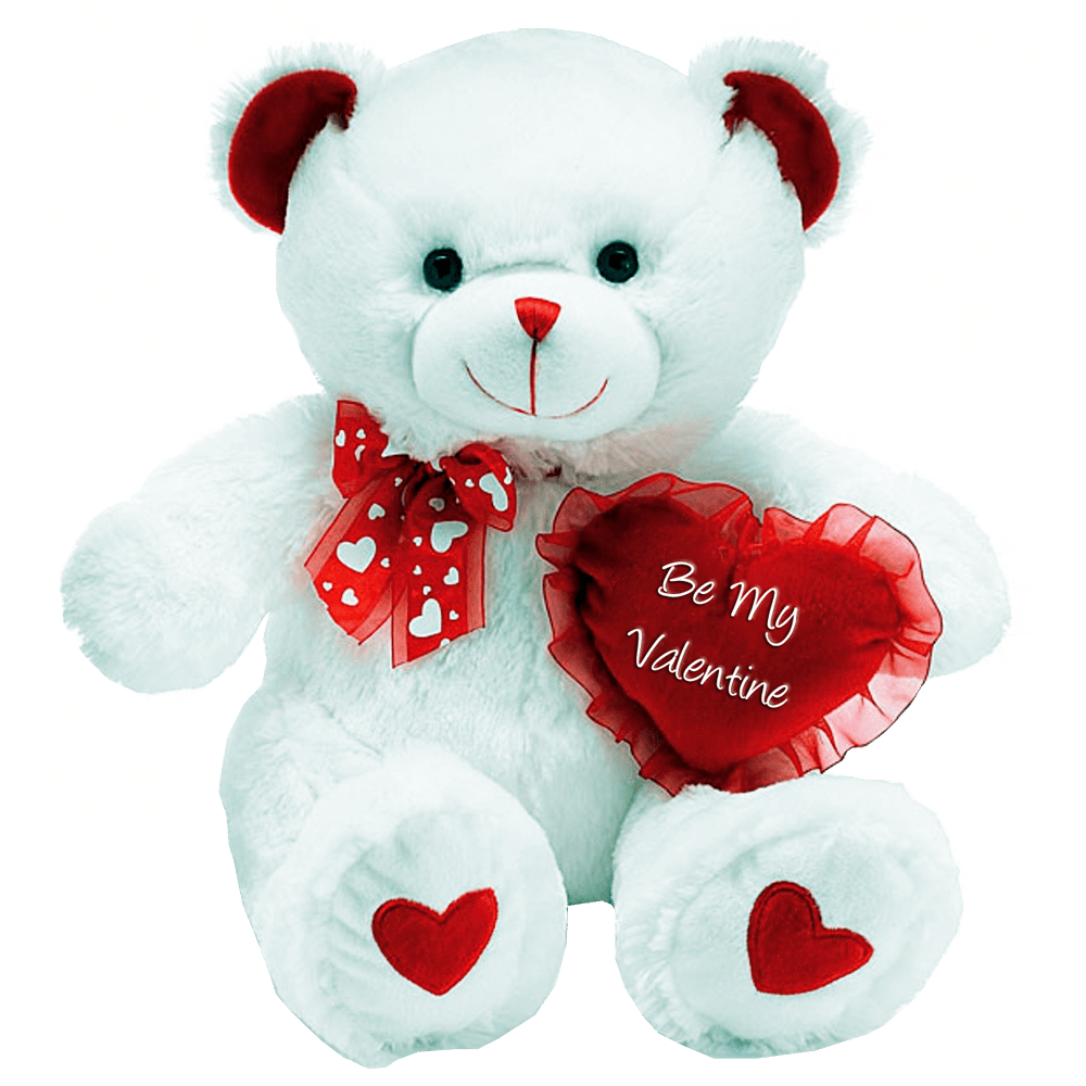 teddy bear, gallery png images #15668