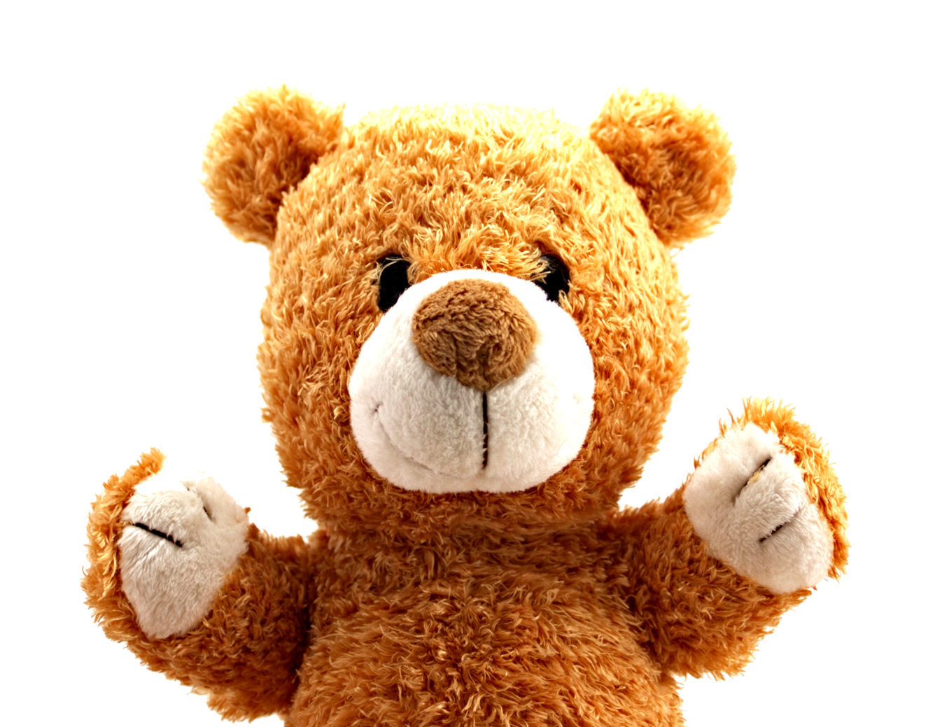 teddy bear png image pngpix #15665