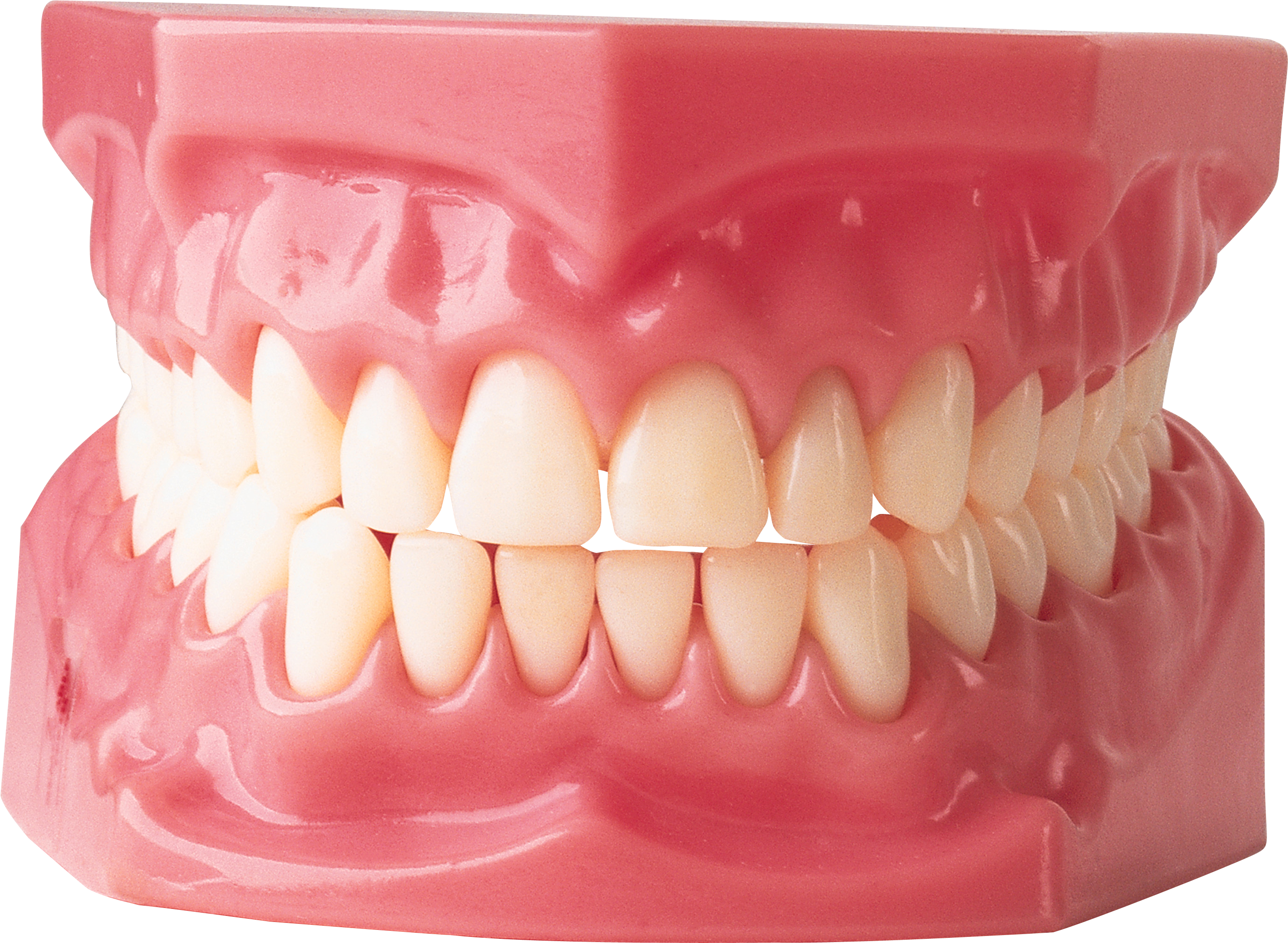 teeth png icons and png backgrounds #25659