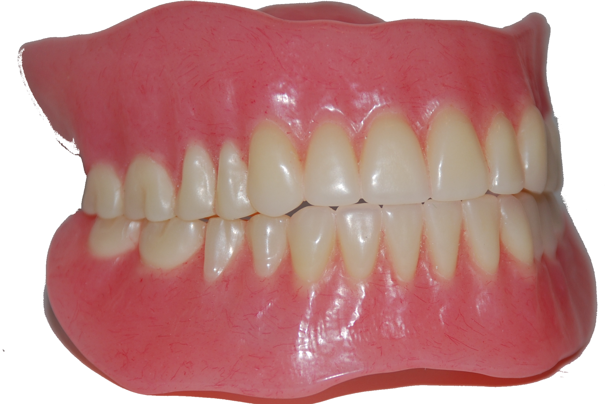 teeth transparent png pictures icons and png #25681