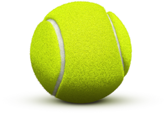tennis ball png images dogs lovely friend png only #26690