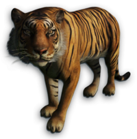 image cutout tiger far cry wiki 14753