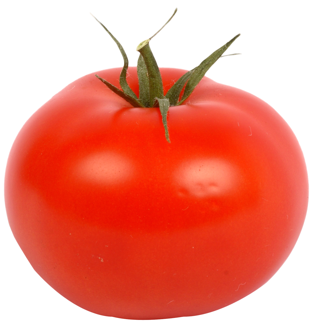 fresh red tomato png image png transparent best photos #15576