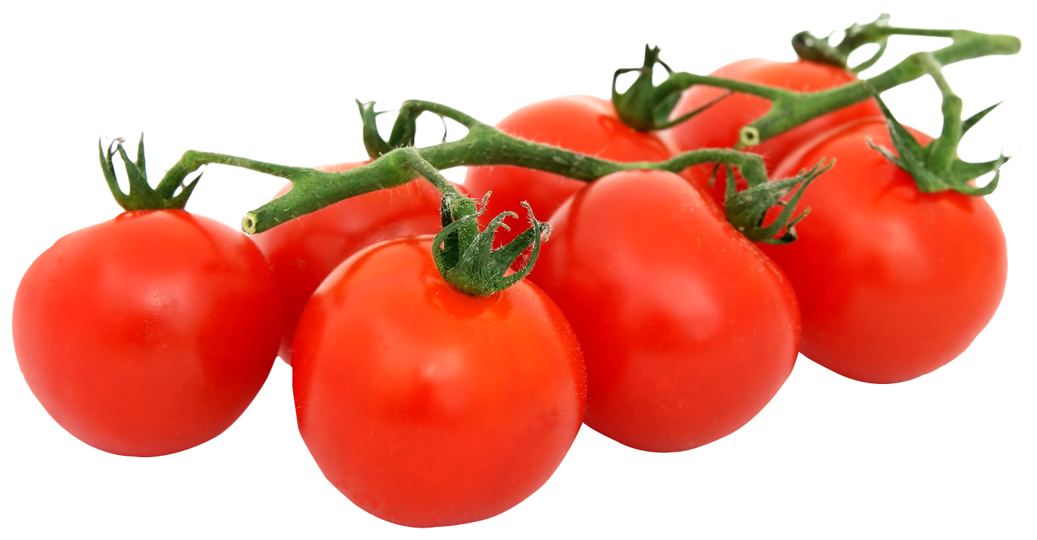 tomato, bunch fresh tomatoes png image pngpix #15560