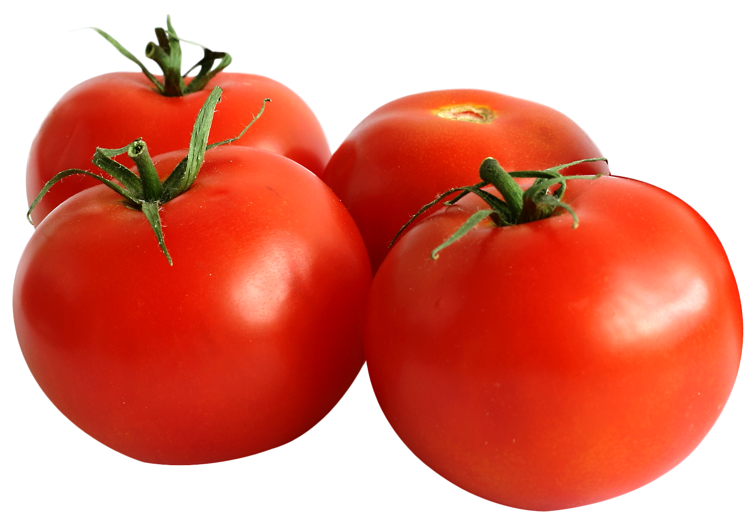 tomato png image png transparent best photos #15574