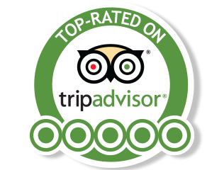 tripadvisor logo, tripadvisor still flying high its journey instant bookings digital innovation and 28215