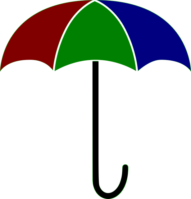 vector graphic umbrella colored weather #18777