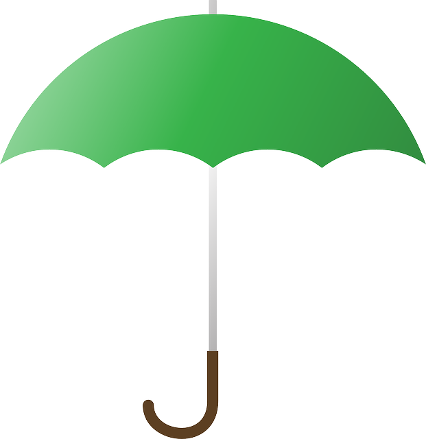 vector graphic umbrella cover rain green #18774