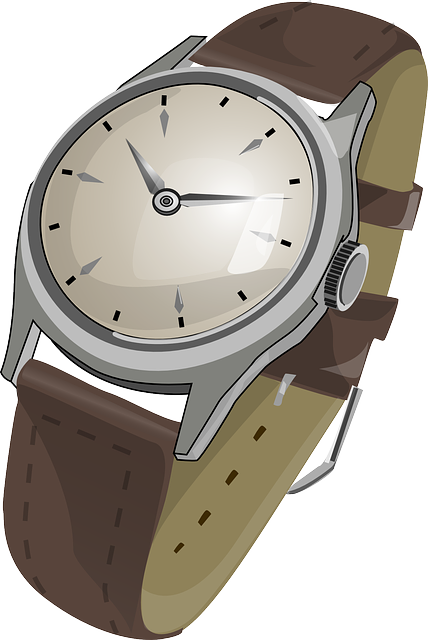 watch wristwatch wrist vector graphic pixabay #18718