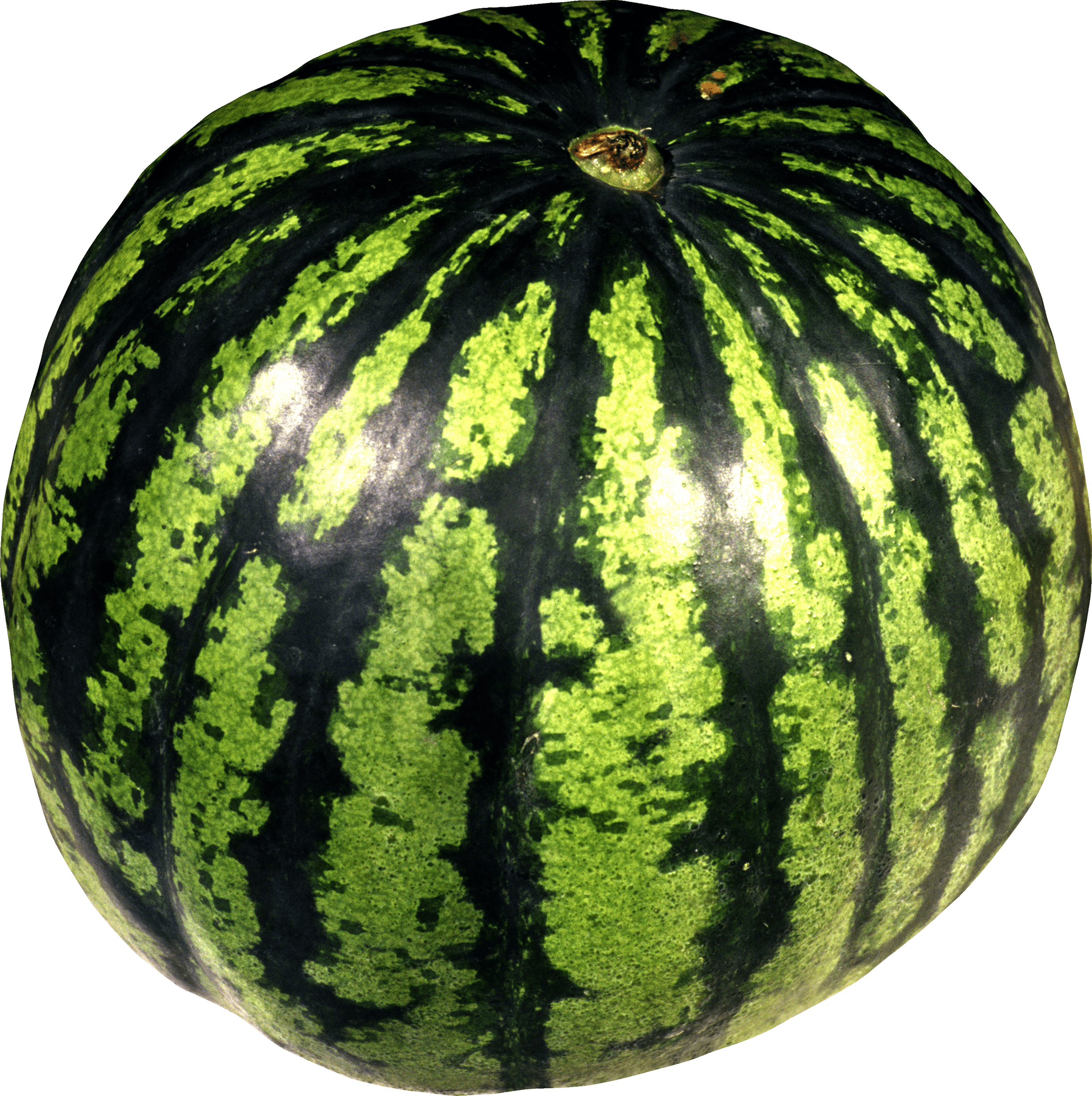 download watermelon png image png image pngimg #17850