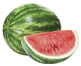 watermelon, gea products #17835