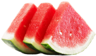 watermelon, habbobites celebrations the day august #18092