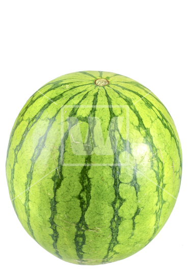 watermelon png download high resolution png image from #17936