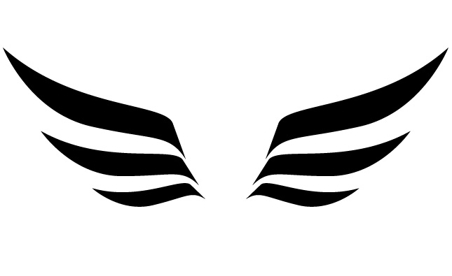 wings logo png 1204