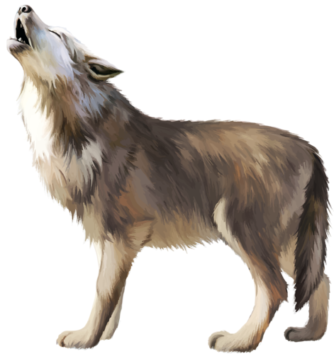 wolf, png lobo transparent lobo images pluspng #19492